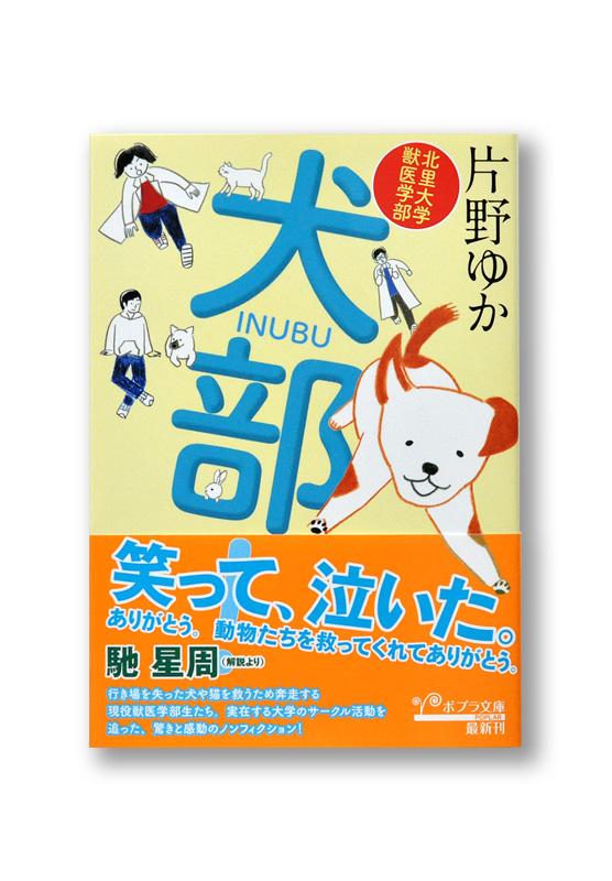 K_INUBU_obi_B