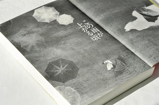 K_rain_hon02_T