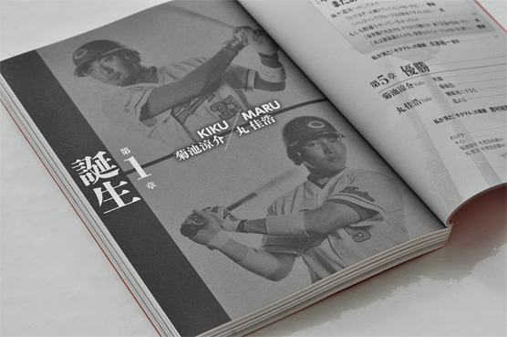 K_kikumaru_hon01_T