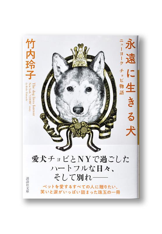 K_dog_obi_B